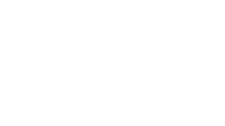 bureau veritas logo in white